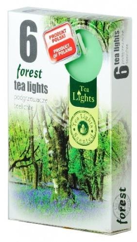Z-Trade Čajové 6ks Forest vonné svíčky