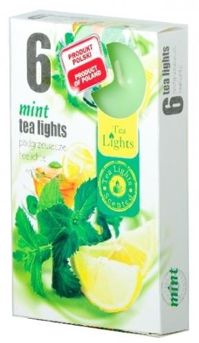 Z-Trade Vonné čajové svíčky, 6 ks, Mint (máta)
